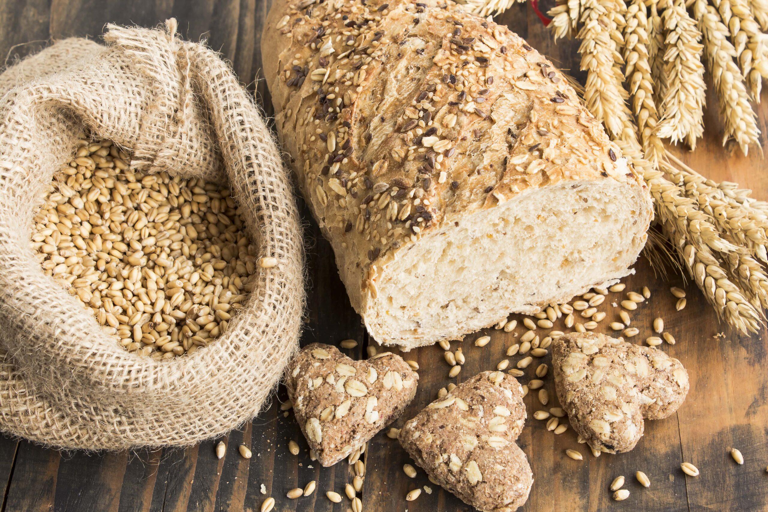 proteína do trigo